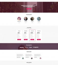 business-6-theme-by-plus363studio